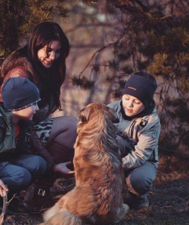 family-labrador